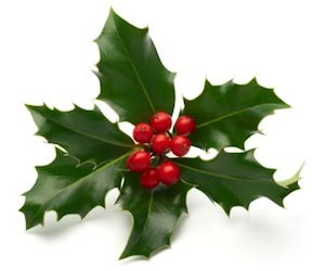 http://cltg.org/cltg/clt2020/images/christmas_holly.png